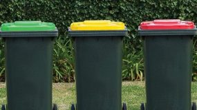 Red and Yellow Bin Roll Out