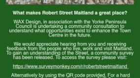 Community survey – Robert Street, Maitland