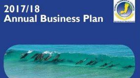 Draft 2017/18 Annual Business Plan