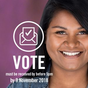 2018 Council Election – Voting