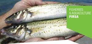 New Fishing Rules Start 1 December 2016