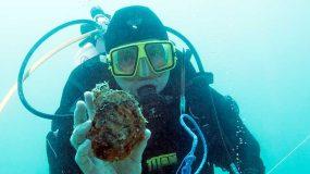 YP Trial Shellfish Reef