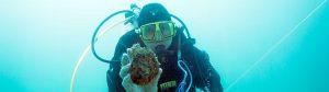 Yorke Peninsula Shellfish Reef