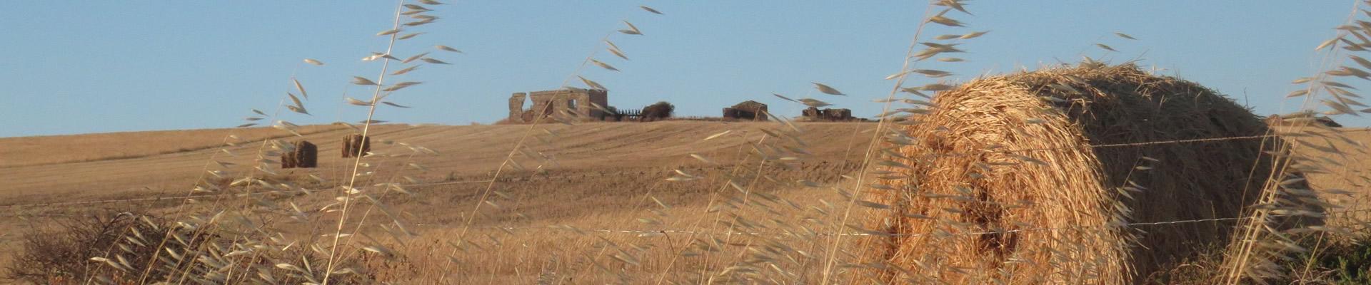 farming-slide